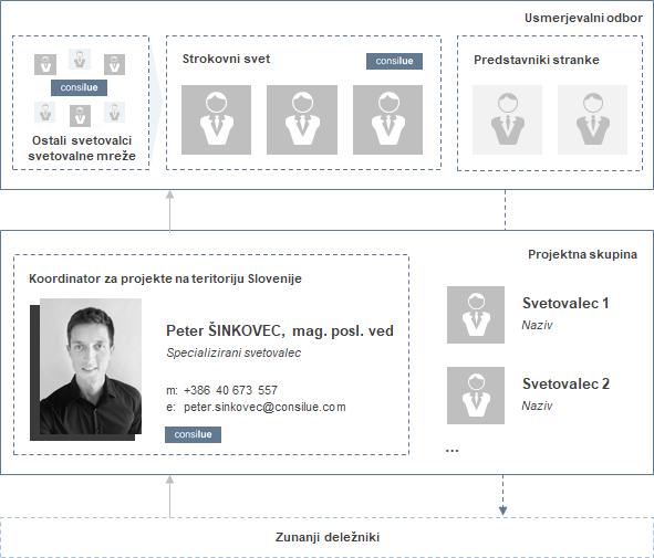 Projektno delo - Consilue Slovenija - Peter Šinkovec